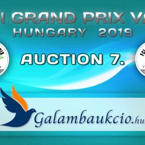 FCI Grand Prix Vác Hungary 2019. AUKCIÓ 7.