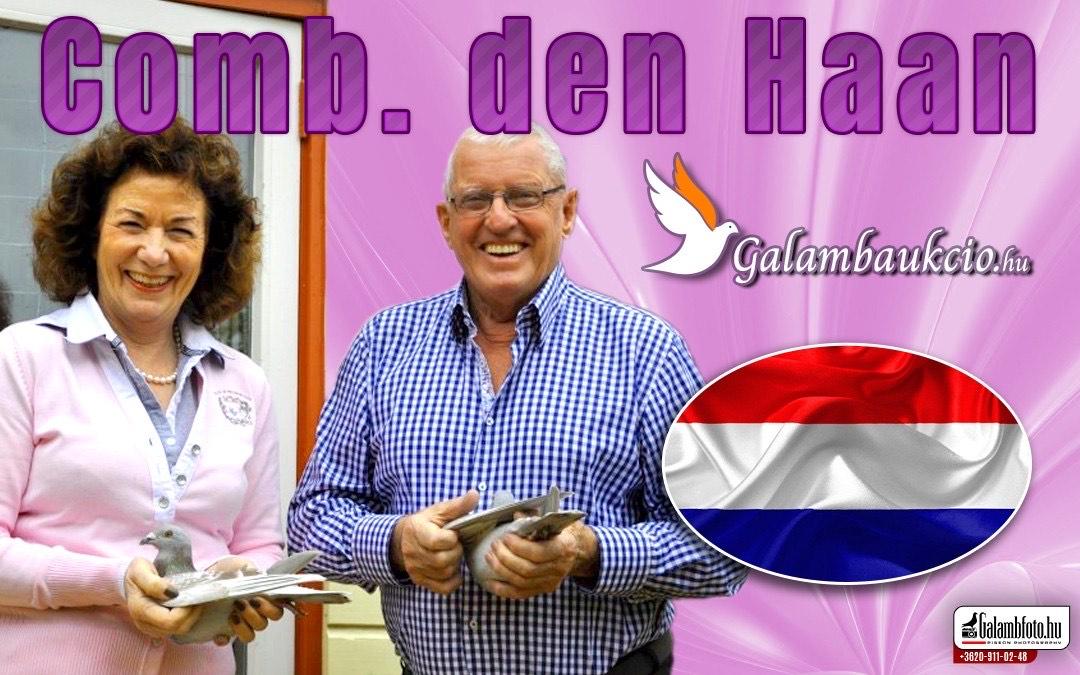 Karen Den Haan – A holland postagalambsport First ladyje!