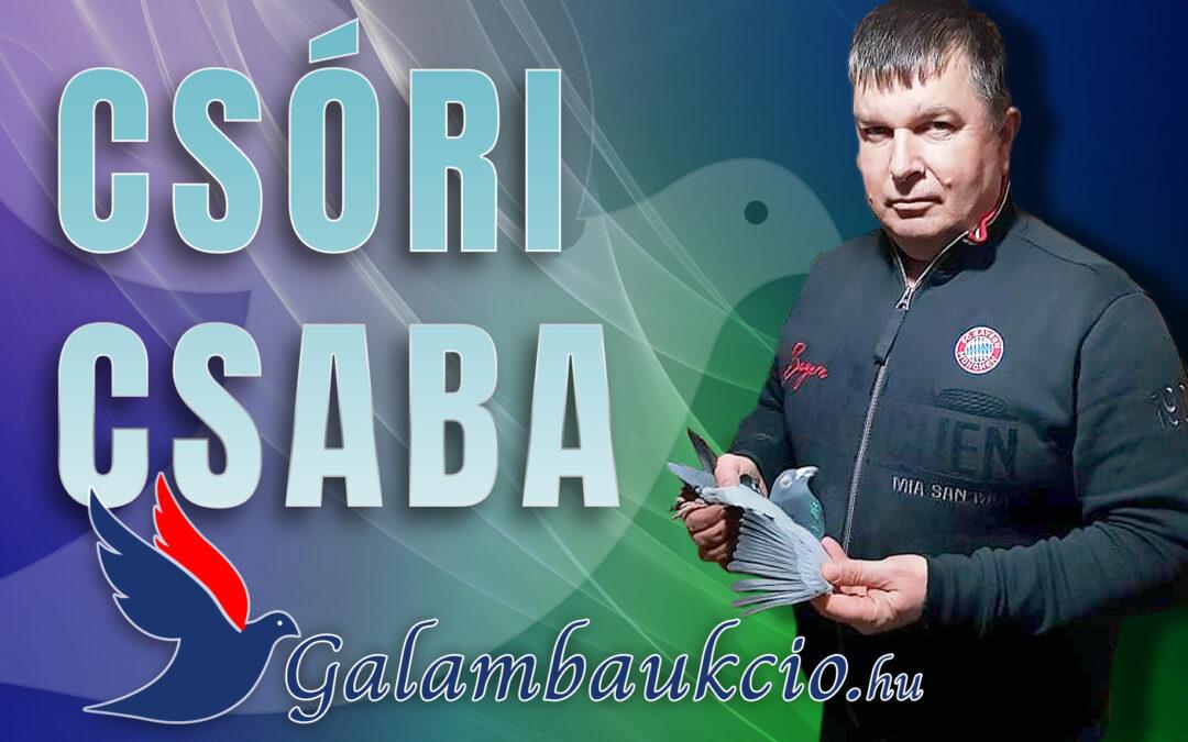 """""""Titkok"""" nélkül! – Csóri Csaba"""