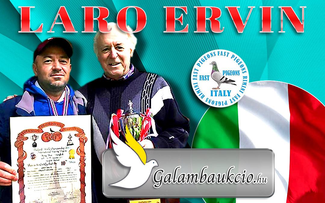 Postagalambász Olaszországból, Ervin Laro
