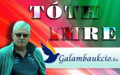 Tóth Imre – Balatonkenese