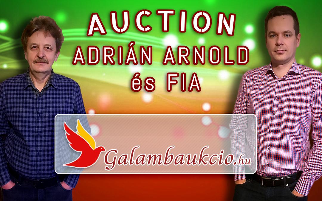 Adrián Arnold és fia aukció