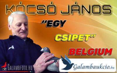 """""""Egy csipet"""" Belgium…  – KÓCSÓ JÁNOS"""