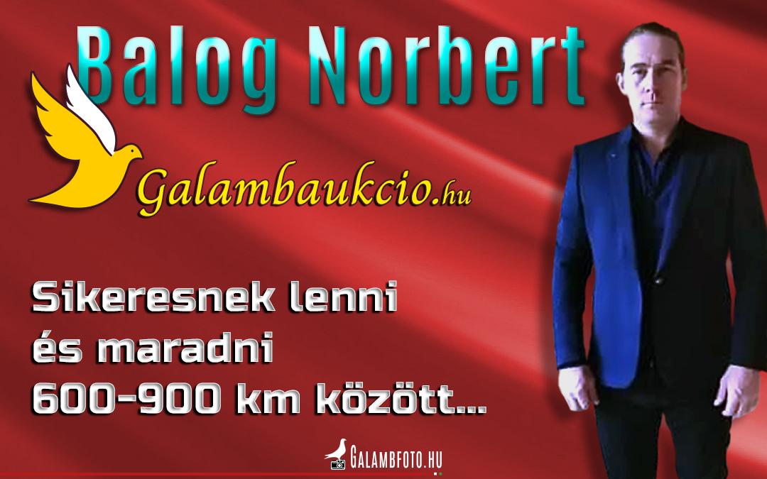 Sikeresnek lenni és maradni 600-900 km között –Balog Norbert