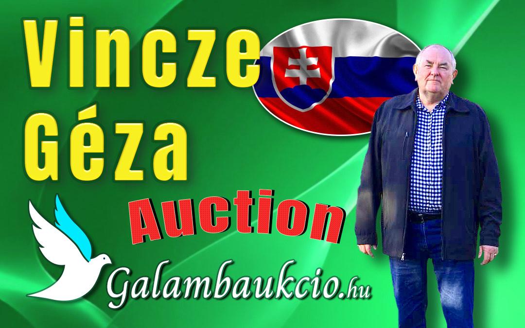 Vincze Géza aukció